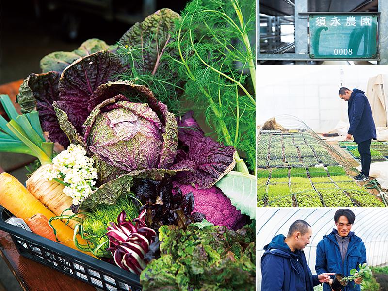 実りの秋、大地と海からの美味なる恵み 生産者とシェフがタッグを組み、旬の野菜を直送 ブルーノート東京