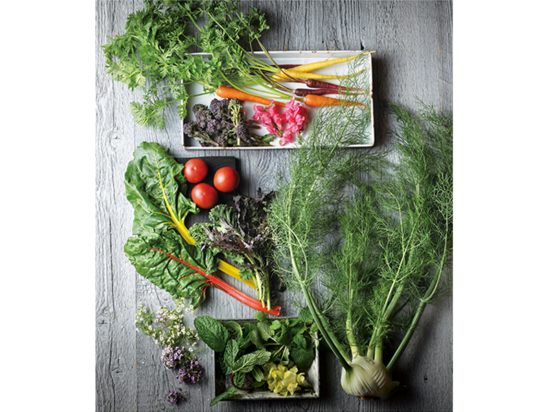 野菜からひらめくインスピレーションをひと皿に